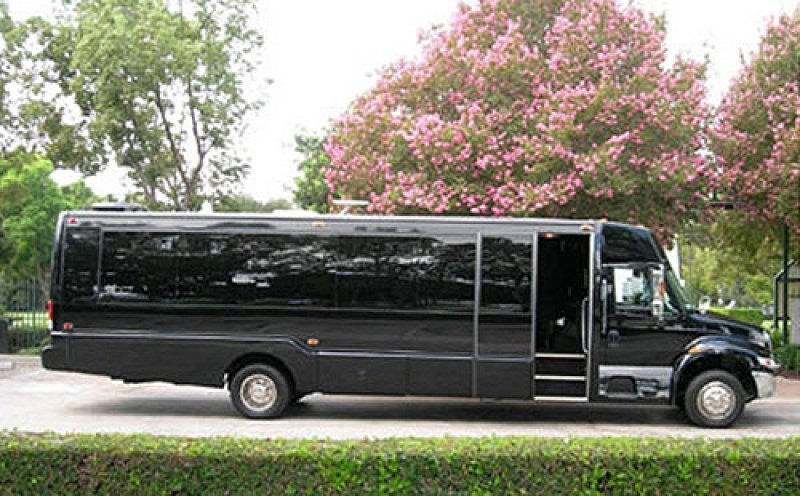 mini-party-bus-limo-left